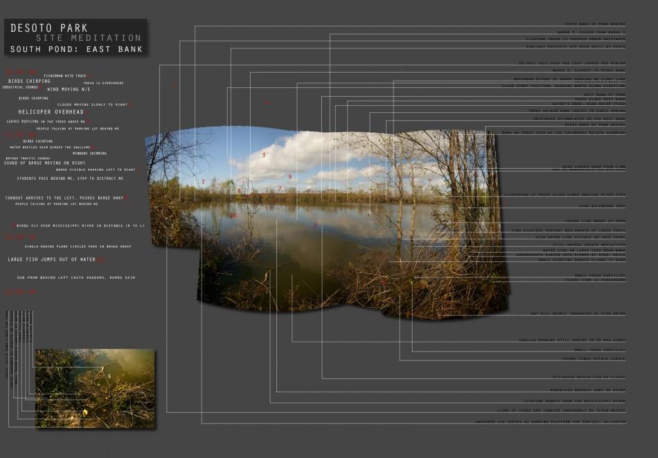Peter Graves Site Observation 006