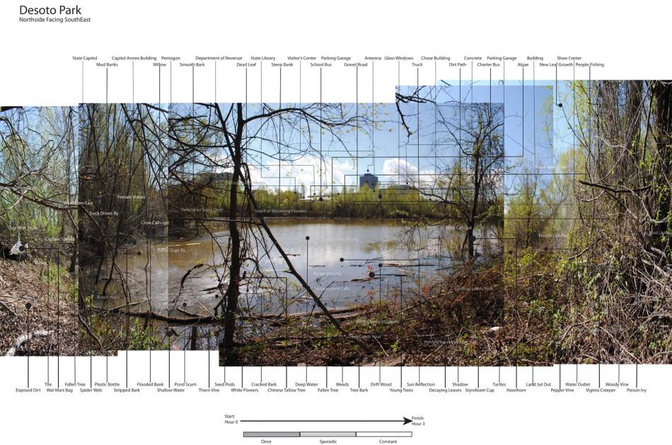 Cerys Heroman Site Observation 006